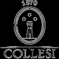 Logo-collesi-quadrato_nero